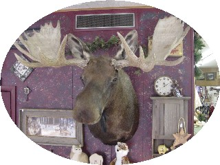 And....Mr. Moose...