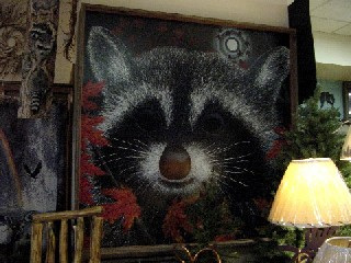 Our five foot raccoon picture.